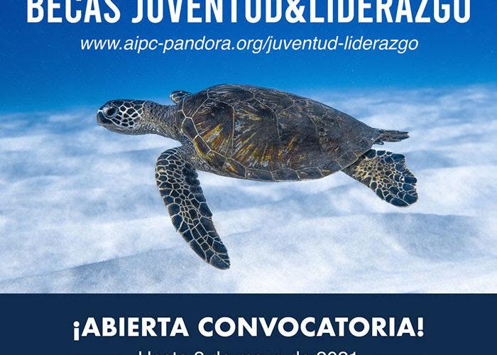AIPC PANDORA: Becas Juventud&Liderazgo